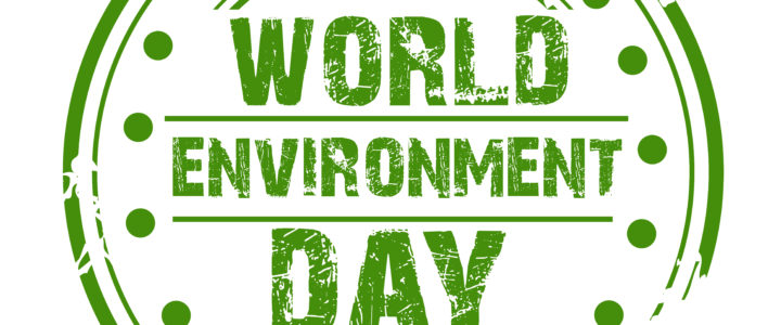 World Environment Day: 5 Ways You Can Play Your Part